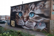 Amazing and Beautiful Street Art