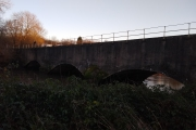 The River Tame walk