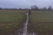 Muddy trek across the fields!