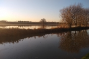 Flooded fields!