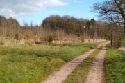 Our favourite walk in Norbury