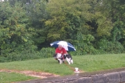 Keeping Sal dry under the brolly